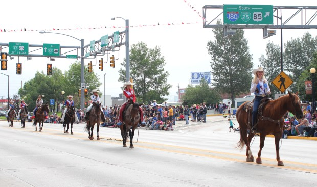 There were a lot of horses in the parade.