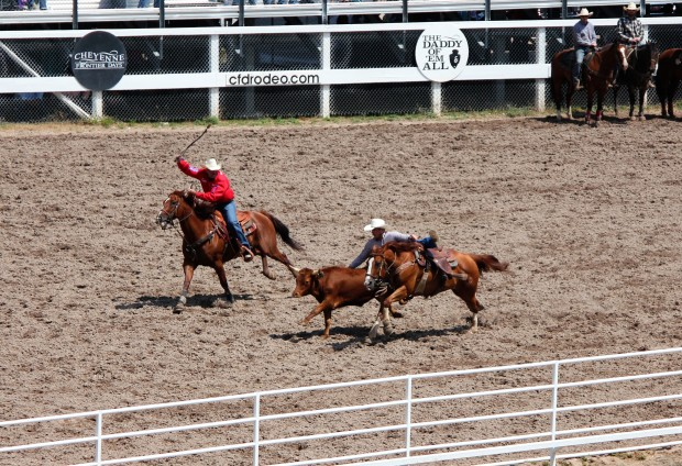CFD boasts to having the largest rodeo stock.