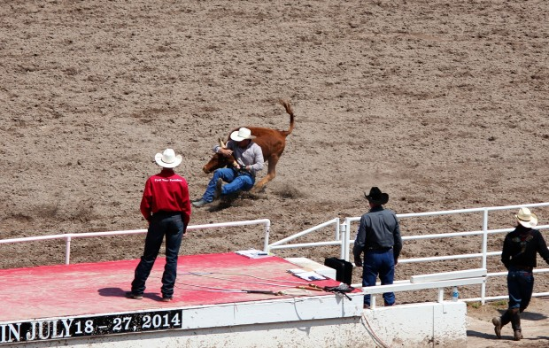 Which is challenging if you are a steer wrestler.
